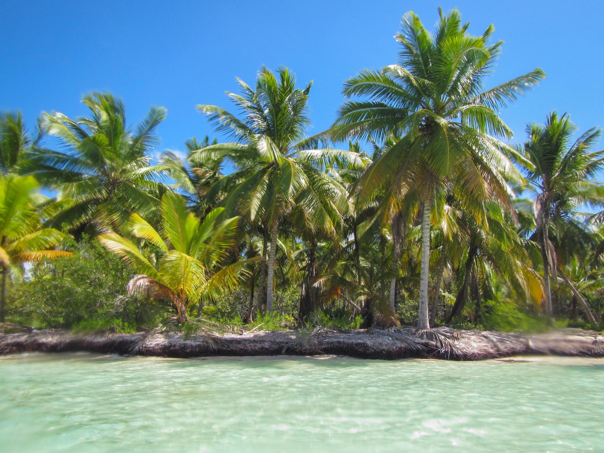 caribbean-shore-1457611821S6K