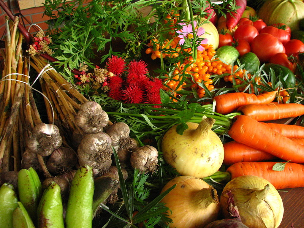 There are many steps you can take to Live a More Natural and Organic Life