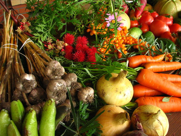 1024px-Ecologically_grown_vegetables